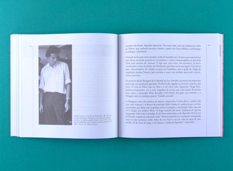 BOOK JEFFERSON DEL RIOS BANANAS AO VENTO ANOS 70 CULTURE TROPICALIA UNDERGROUND BRAZIL