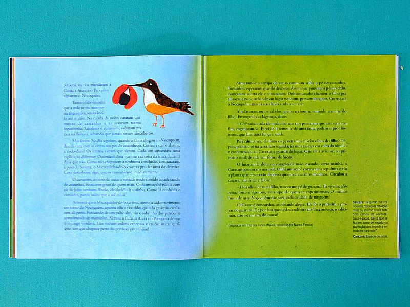 BOOK FLAVIA SAVARY LENDAS DA AMAZONIA AMAZON BRAZILIAN LEGEND NEW CHILDREN BRAZIL