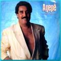 LP AGEPE CULTURA POPULAR 1989 GERALDO VESPAR SAMBA ROOTS BRAZIL