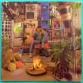 LP EVANDRO MESQUITA 1986 BLITZ ROCK GROOVE ASDRUBAL BRAZIL