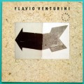 LP FLAVIO VENTURINI CIDADE VELOZ 1990 MINAS FOLK JAZZ BRAZIL