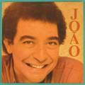 LP JOAO NOGUEIRA 1988 SAMBA FOLK CHORO BRASIL
