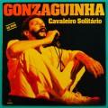 LP LUIZ GONZAGA JR CAVALEIRO SOLITÁRIO 1993 GONZAGUINHA BOSSA BRAZIL
