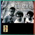 LP OS PARALAMAS DO SUCESSO D 1987 PSYCH POP ROCK BRAZIL