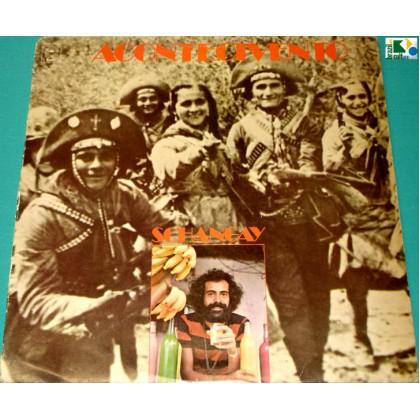 LP XANGAY SCHANGAY '76 1ST BURNIER DOMINGUINHOS IVINHO FOLK REGIONAL BAIAO PSYCH BRAZIL